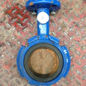 Grinnell-WC-8281-3-3-WCB-Wafer-Butterfly-Valve-250PSI-192258529634