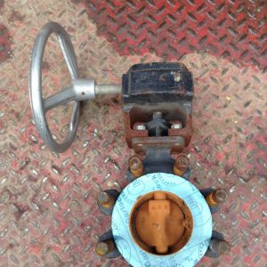 Crane-Flowseal-3-WCB-Manual-Wafer-Butterfly-Valve-740PSI-Class-300-142457116655